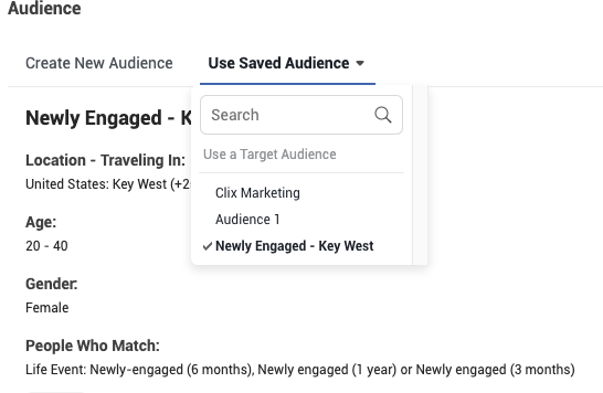 Selecting your saved audience.