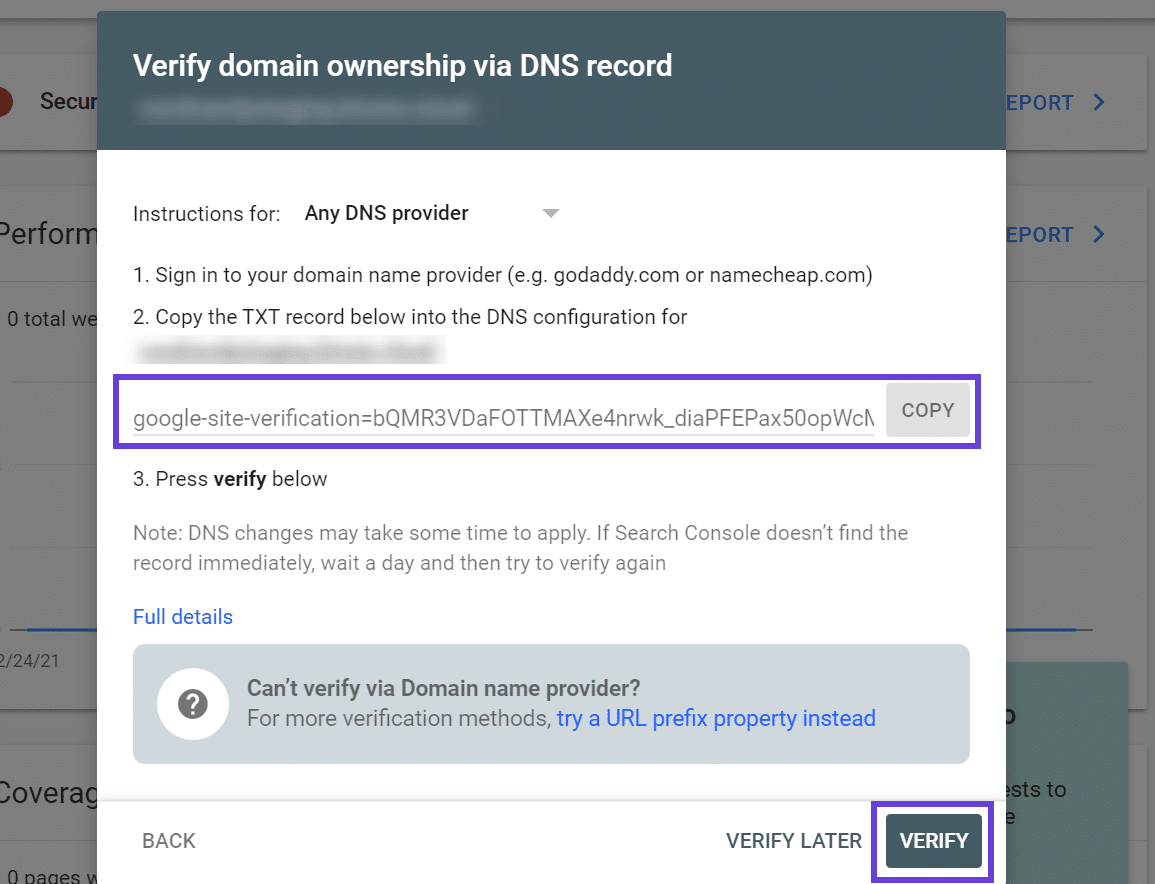 The window for editing DNS records at Kinsta with the TXT record highlighted.