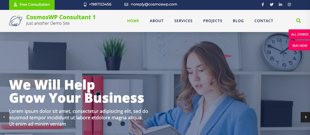 CosmosWp theme for consultant