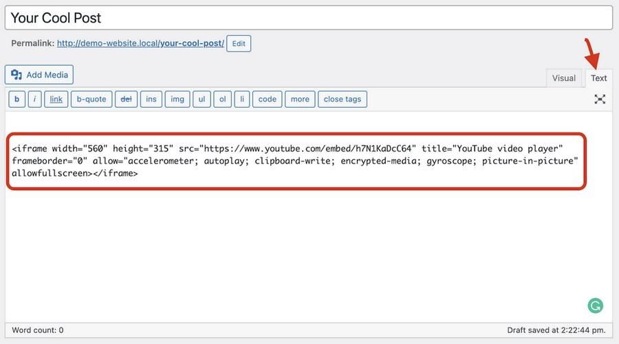 WordPress classic editor text mode