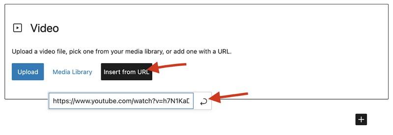 WordPress insert video from URL