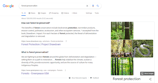 Google SERP example for keyword.