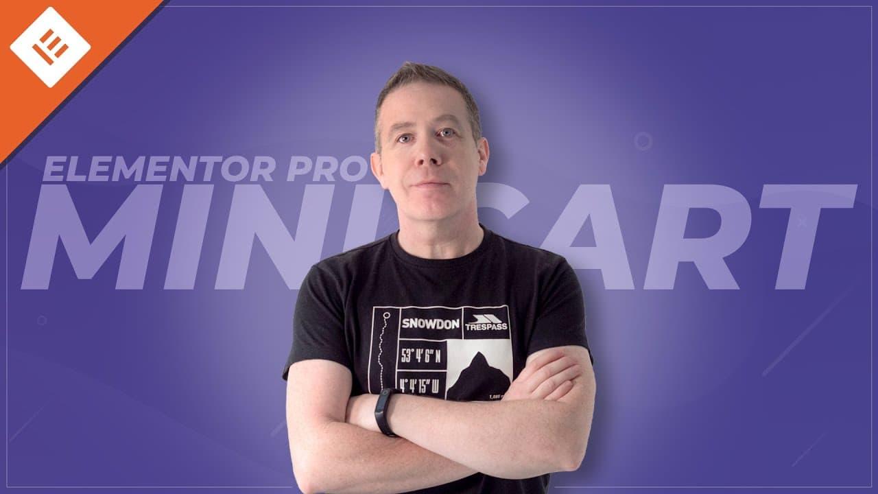 Elementor Menu Cart   Add A Mini Cart with Elementor Pro