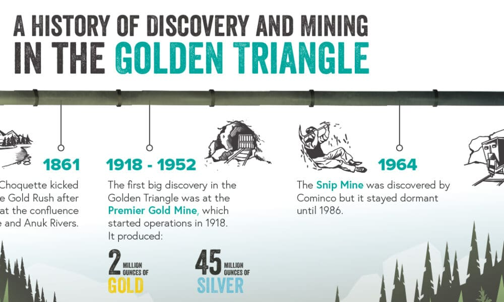 Visualizing the Economic Impact of British Columbia's Golden Triangle