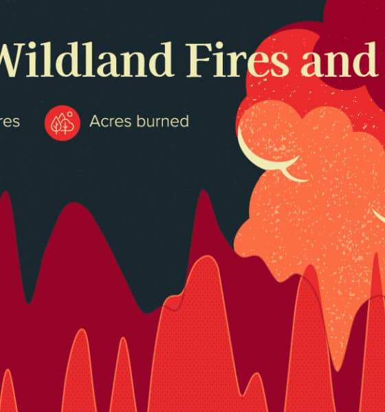 Chart: 30 Years of Wildfires in America