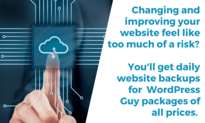 It may seem risky to change your website for the better out of fear that your site might get deleted? With WordPress Guy, you don't need to worry. Eve...