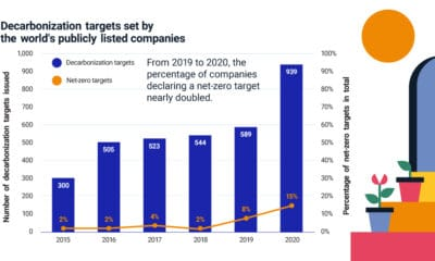 Net-Zero Emissions: The Steps Companies and Investors Can Consider