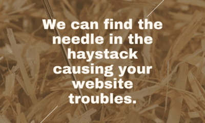 Searching through your website to find the tiny issue plaguing your entire site can feel like searching for a needle in a haystack. WordPress guy will...