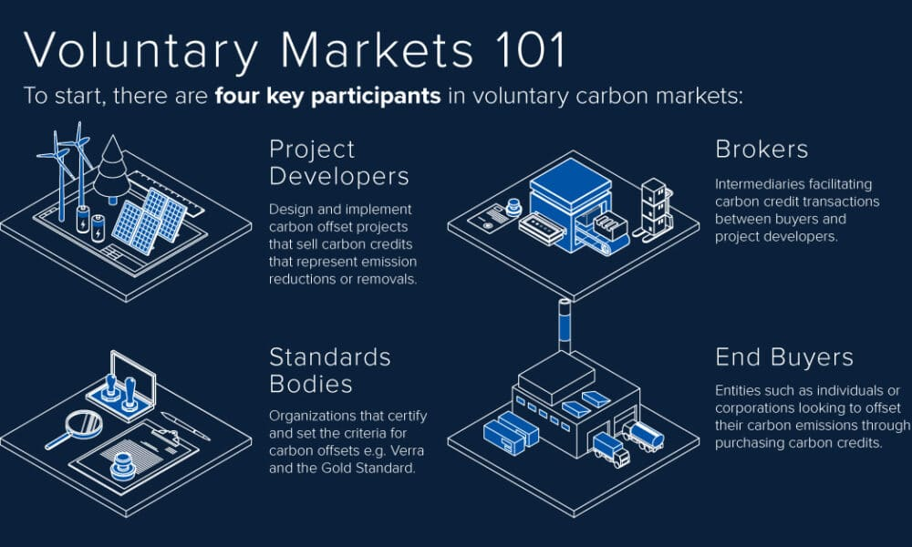 A Complete Visual Guide to Carbon Markets
