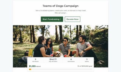 GiveWP Launches Peer-to-Peer Fundraising Add-On